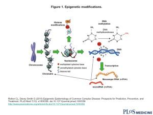 Modificación epigenética