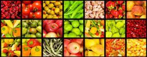 Antioxidantes y polifenoles