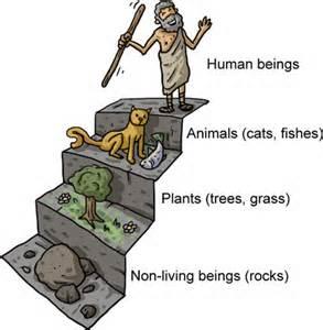 La scala naturae