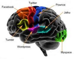 áreasa del cerebro secuestradas