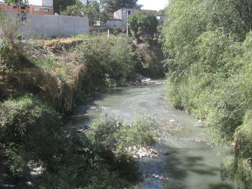 Tlahuapan. Alrededor de mil 200 campesinos del municipio riegan sus cultivos con agua contaminada del río Atoyac