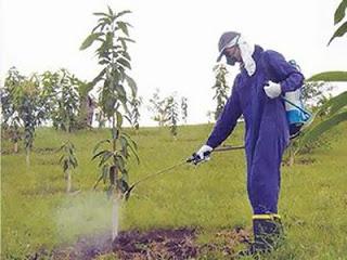 Revolución verde y agroquímicos
